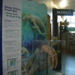 Chula Vista Nature Center FREE 10/15 for National Refuge Week!