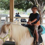 Zoomars Petting Zoo in San Juan Capistrano ~ Great fun!