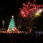Tony Hawk To Light LEGO® Christmas Tree at LEGOLAND® CA!