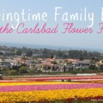Springtime Family Fun at the Carlsbad Flower Fields