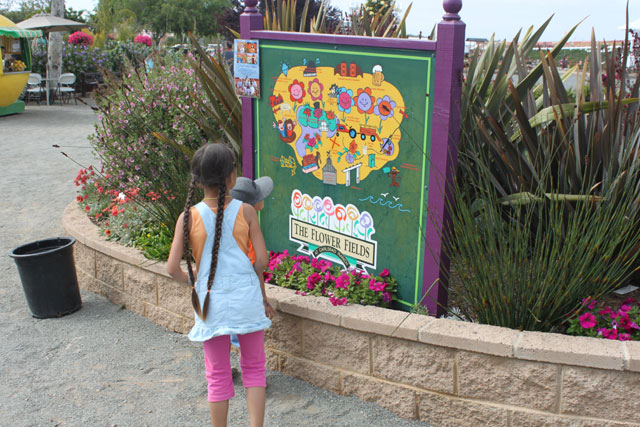 Map of the Carlsbad Flower Fields ~ www.socalwithkids.com