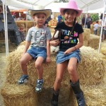 Family Pumpkin Patch & Fall Festival at SDCDM!