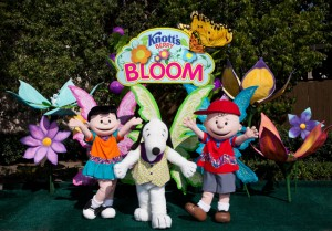 knotts_berry_bloom