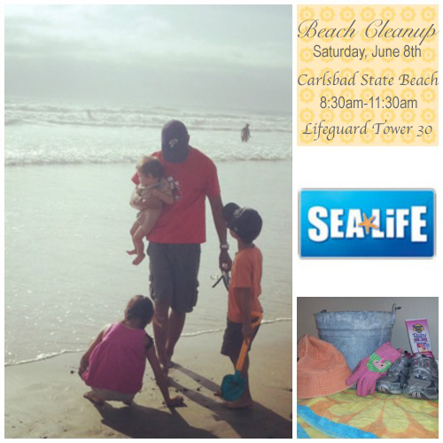 Beach Cleanup with SEA LIFE