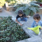 San Diego Botanic Garden Is Fun To Explore With Kids!