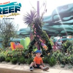 In Touch With Aquatic Life At SeaWorld San Diego's Explorer's Reef!