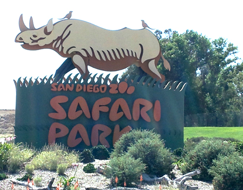 The San Diego Zoo Safari Park ~ www.socalwithkids.com