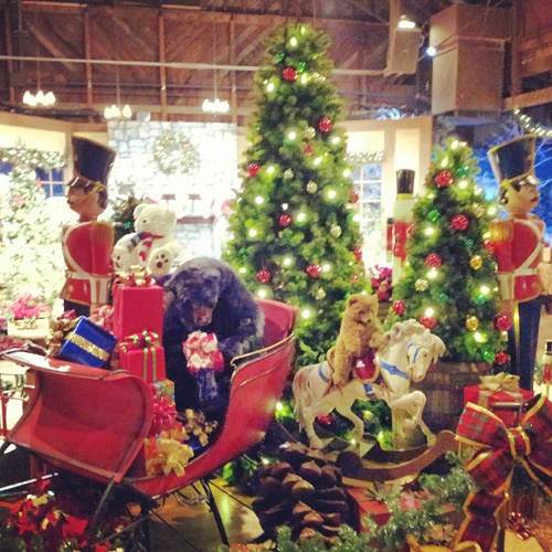Knott's Berry Farm Holiday Store