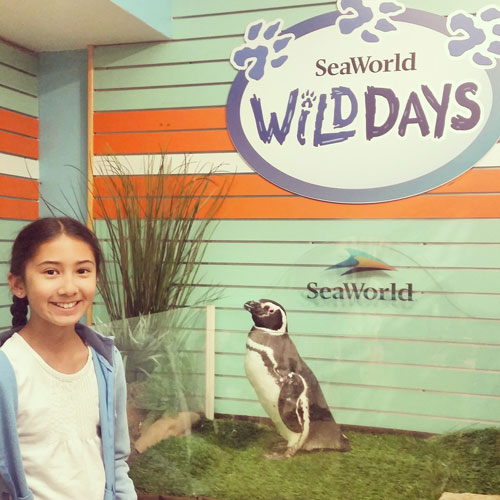 SeaWorld Wild Days Animal Connection ~ www.socalwithkids.com