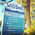 SeaWorld Wild Days Promotes Wildlife Conservation In A Fun Atmosphere