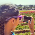 Taking Pictures at the Carlsbad Flower Fields ~ www.socalwithkids.com