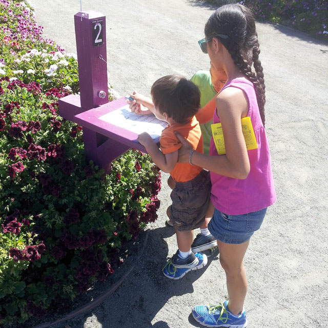 Passport Stamping Activity at the Flower Fields