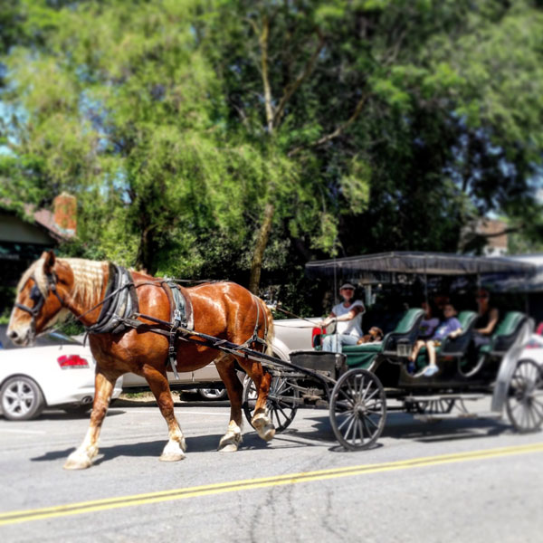 Julian Horse Carriage Ride - www.socalwithkids.com